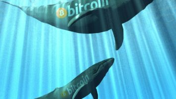 Bitcoin Whales